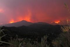 Кипр обратился за международной помощью на фоне сильных лесных пожаров