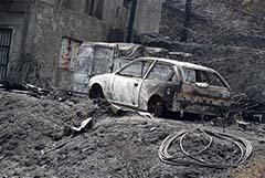 На Кипре тушат самый крупный в новейшей истории острова природный пожар