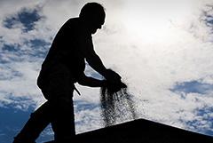 Аграрии РФ начали считать потери от засухи. Обзор