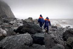 Найдены тела всех жертв крушения Ан-26 на Камчатке