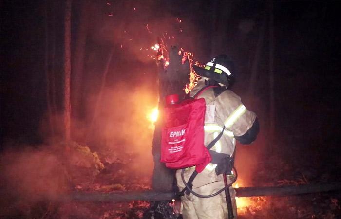 Глава МЧС заявил о неблагоприятном прогнозе по лесным пожарам в РФ