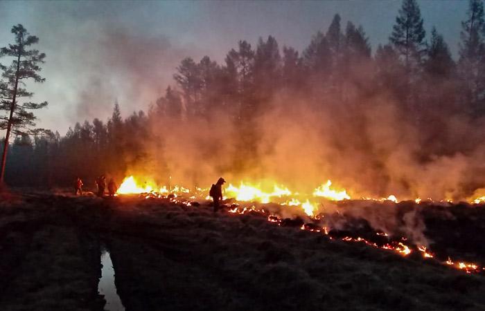 Глава Якутии сообщил, что региону нужно 1,3 млрд руб. на борьбу с пожарами