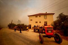 В Анталье вспыхнул масштабный лесной пожар