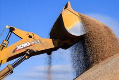 Власти Удмуртии призвали не вывозить зерно из региона из-за дефицита
