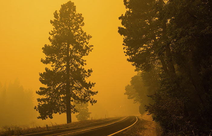 Эксперты ООН сочли многие климатические изменения необратимыми