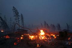 Путин поручил выделить из резервного фонда допсредства для тушения пожаров