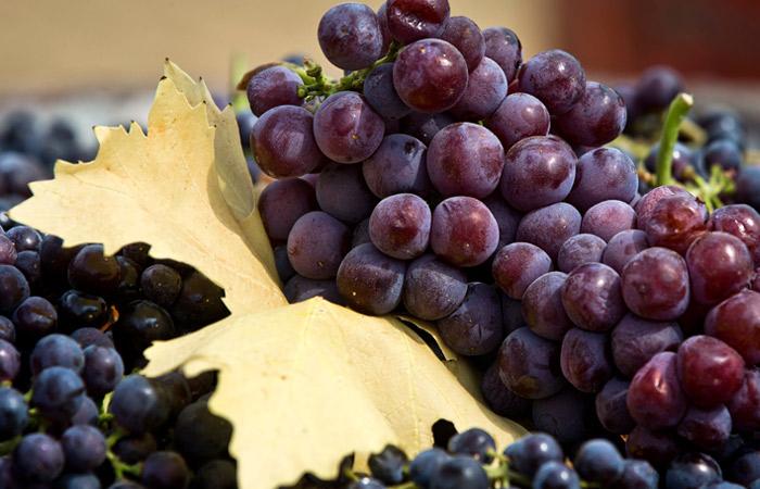 Виноград для производства вина подорожает в РФ минимум на 30%