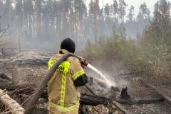 Два пожара тушат на территории Мордовского заповедника