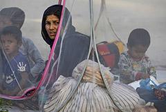 Около тысячи человек получили разрешение на въезд в РФ из Афганистана