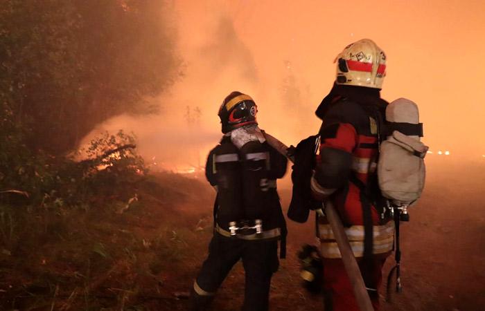 Пожарные спустя месяц смогли потушить крупный пожар в Мордовском заповеднике