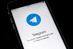Telegram заблокировал боты с предвыборной агитацией на выборах в РФ