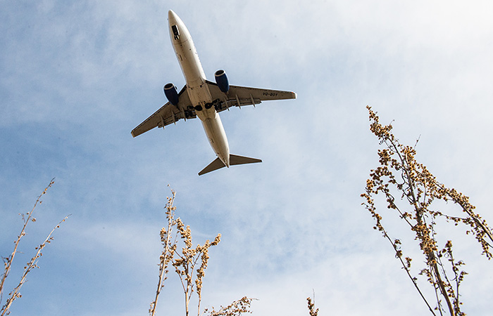 РФ с 5 октября возобновляет авиасообщение еще с пятью странами