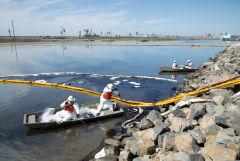 Власти Калифорнии назвали экологической катастрофой разлив нефти у побережья штата