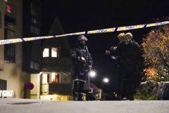 В Норвегии мужчина застрелил из лука несколько человек
