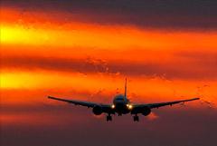 Россия в ноябре возобновит авиасообщение еще с девятью странами