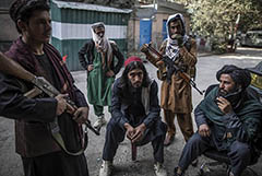 Путин счел, что талибам будет трудно отказаться от наркодоходов