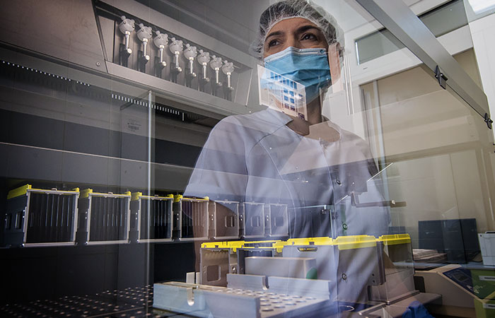 В РФ не выявили случаев заражения людей птичьим гриппом H5N6