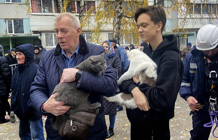 Жильцы взорвавшегося дома попросили спасти их кошек и собак